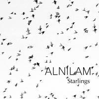 Starlings Album Cover