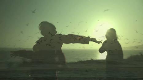 Still shot from Lilac video